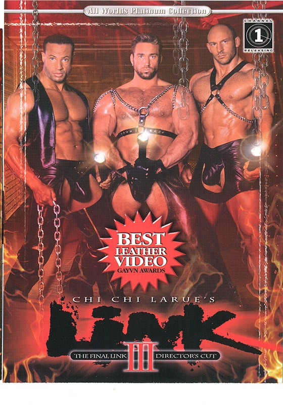 Link 3: The Final Link DVD - Front
