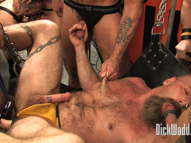 Breeding Sessions #1 DVD - Gallery - 011