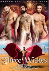 Three Wishes DVD