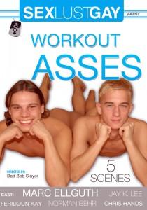 Workout Asses DVD