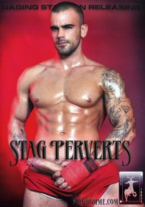 Stag Perverts DVD (S)