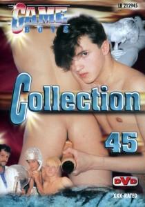 Game Boys Collection 45 DVDR (NC)