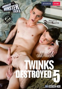 Twinks Destroyed 5 DVDR (NC)