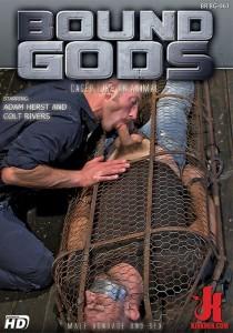 Bound Gods 61 DVD (S)