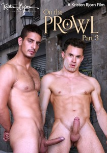 On The Prowl Part 3 DVD (S)