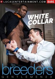 Gentlemen #23 - White Collar Breeders DVD (S)