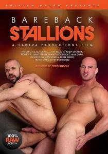 Bareback Stallions DVD