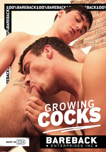 Growing Cocks DVD
