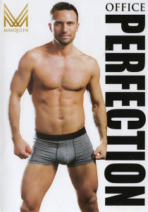 Office Perfection DVD (S)