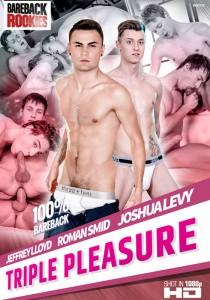 Triple Pleasure DVD